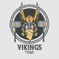 Vikingar krigare