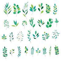Uppsättning av olika gröna blad
