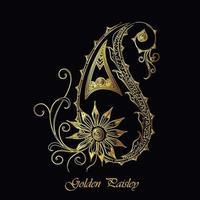 Eleganter Golddekorativer Paisley-Entwurf vektor