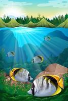 Fische schwimmen unter dem Ozean vektor
