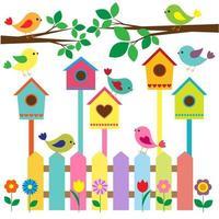 Samling av färgglada fåglar och fågelhus