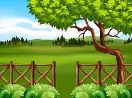 Naturplats med fält och träd framför staketet