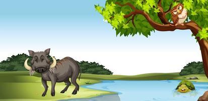 Vilda djur vid dammet vektor