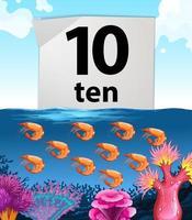 Nummer zehn und zehn Garnelen unter Wasser