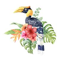 Aquarell tropischer großer Hornbill im Hibiscusblumenstrauß. vektor