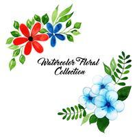 Aquarell Blumensammlung