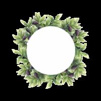 olivblad ram i akvarell stil vektor