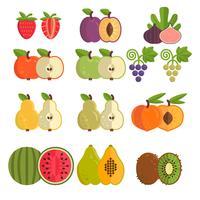 Samling av olika frukter