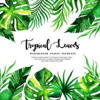 Aquarell tropische Blätter Hintergrund vektor