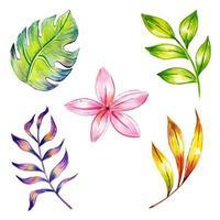 Aquarell Winter und Neujahr Blumen und Blätter Sammlung