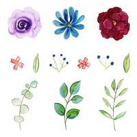 Aquarell Blumen und Blätter Sammlung