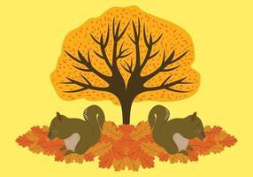 Ekorrar som äter under ett höstträd