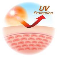 UVschutzgraphik mit Abschluss oben der Haut vektor