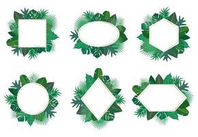 Samling av exotiska tropiska blad ramuppsättning