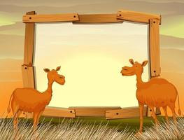 Ramdesign med kameler i fältet