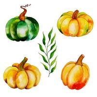 Aquarell Herbst Kürbisse Sammlung vektor