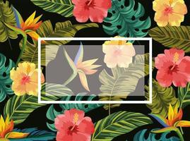emblem med tropiska blommor och blad bakgrund