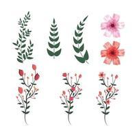 Set tropische Blüten mit exotischen Zweigen Blätter Pflanzen vektor