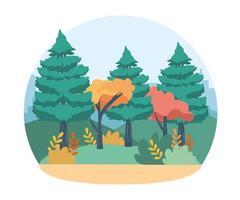 Bäume und Kiefern mit Zweigen, Blättern und Büschen vektor