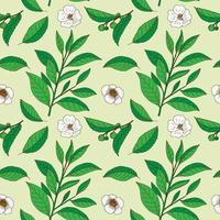 Teebaumblätter und -blumen. Hand gezeichnetes nahtloses Muster der Weinlese.