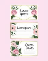 ställa in kort med blommor och rosor med grenblad vektor