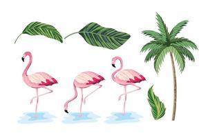 Set exotische Blätter und tropische Palme vektor