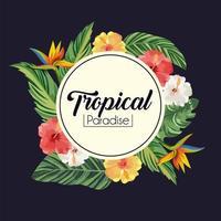 Etikett mit tropischen Blumen, Pflanzen und Blättern vektor