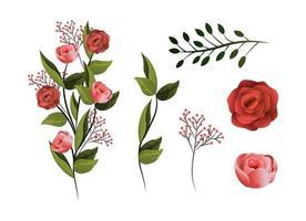 Set tropische Blumen Pflanzen mit Blütenblättern und Blättern