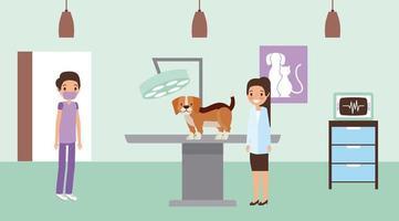 Haustier und Tierarzt vektor
