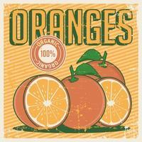 Orange Orangen Vintage Retro Beschilderung vektor