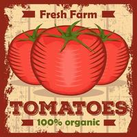 Tomaten-Tomaten-Ketschup-Vintages Signage-Plakat rustikal vektor