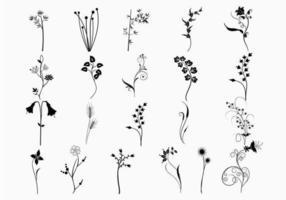 Växt Vector Pack
