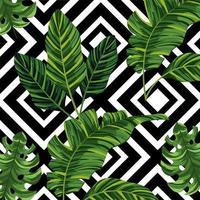 tropische Blätter Pflanzen und Figuren Hintergrund vektor