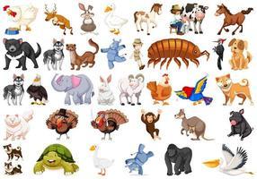 Reihe von verschiedenen Tieren vektor