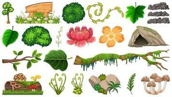 Uppsättning av olika naturobjekt