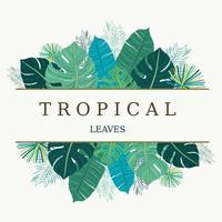 Bunter Blumenrahmen mit tropischen Blättern vektor