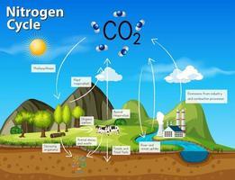 Wissenschaft Stickstoffkreislauf CO2 vektor