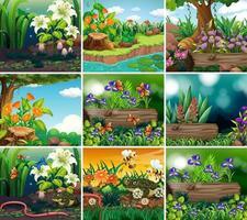 uppsättning bakgrundsbild med natur tema