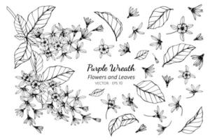 Sammlung von lila Kranzblumen und Blättern