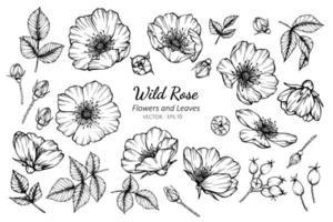 Sammlung von wilden Rosen und Blättern