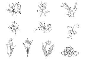 Gezeichneter Blumenvektorsatz