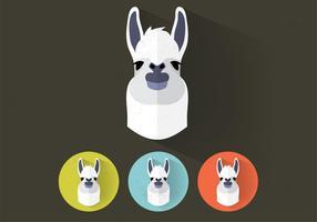 Llama vektorporträtt