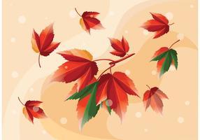 Blätter Vektoren