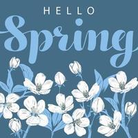 weiße Kirschblüte mit hallo Frühlingsbeschriftung