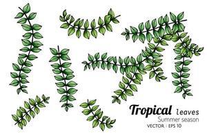 uppsättning tropiska blad med punkter