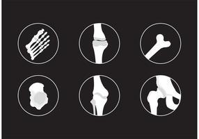 Knochen und Gelenke Vector Icons
