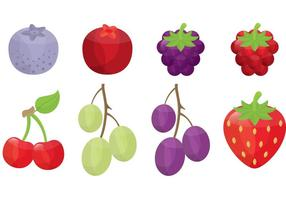 Beeren- und Fruchtvektoren vektor