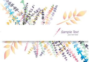Lavendel Banner Card vektor
