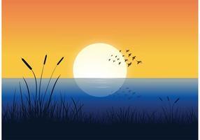Freie Menge der Vögel über Wasser Vektor