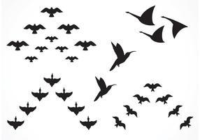 Free Vector Flock von Vögeln
